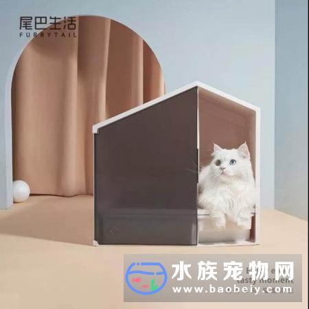 2019年第三季度宠物行业投融资斩获颇丰