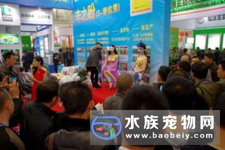 2019武汉展将于6月14-16日在武汉国际博览中心举办!
